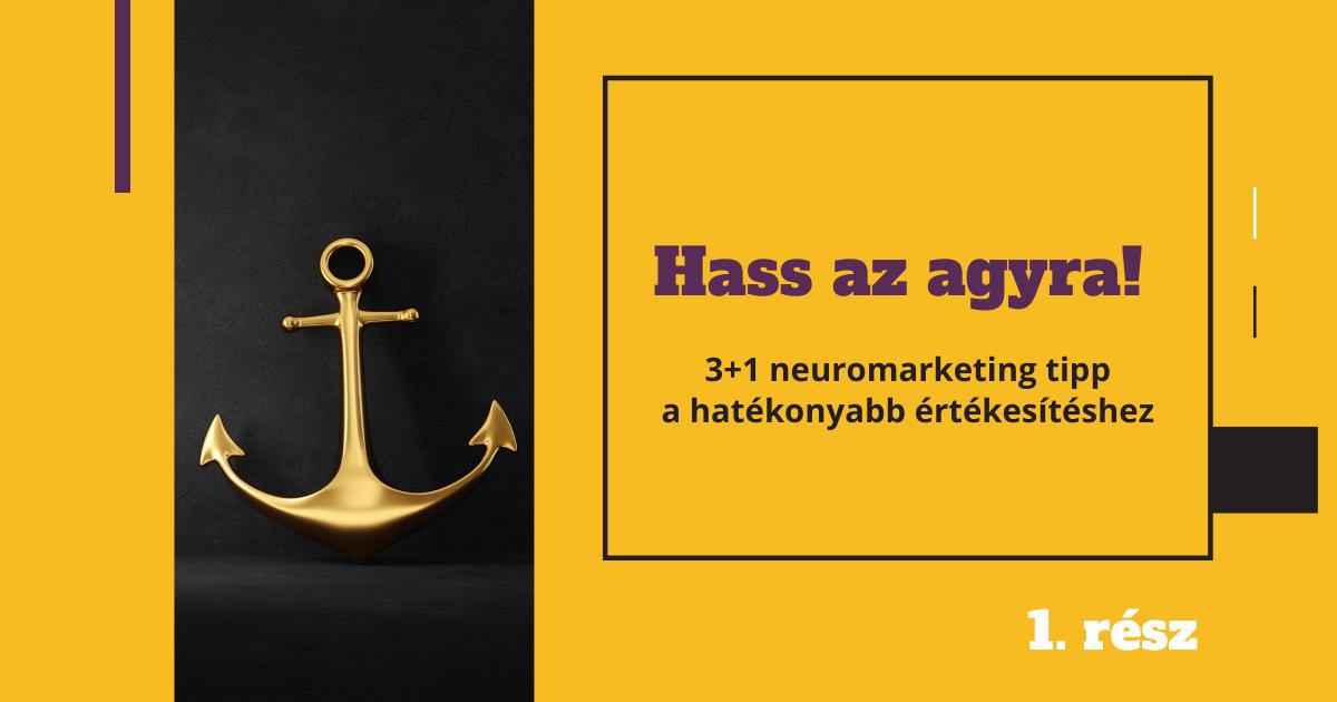Hass az agyra! 3+1 neuromarketing tipp, amivel hatékonyabban értékesíthetsz – 1. rész